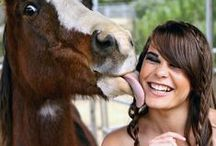 Giddy /  Romance Novels Featuring Horses