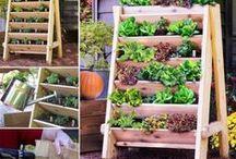 kertészkedés AS