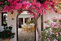 Exterior    outside decoration / Confined only by the walls we build
