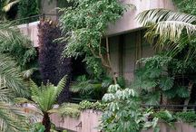 Garden / Outdoor living...