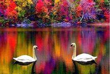 Beautiful world!!!
