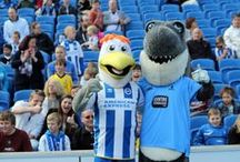 Sid the Shark at the Albion Easter Open Day / Albion opened its doors to the general public for Easter, so Sid the Shark swam down to join Gully and meet a few fans.  / by Sussex County Cricket Club
