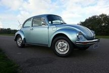 Viva los Vochos! (long live bugs) / for the love of bugs, fusca / by Lance Goodrich