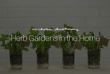 Herb Gardens in the Home