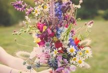 Spring | Lyoness USA