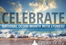 Greenfinity Foundation | Lyoness USA / The Lyoness Greenfinity Foundation (GFF) was established in 2011 as a non-profit foundation. It is a politically independent, charitable organisation, which is actively involved in sustainably protecting the environment and realising innovative climate protection projects worldwide as well as promoting the use of renewable energies.