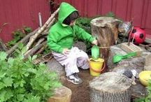 Organizations/Websites / Organizations and websites dedicated to early childhood environmental education