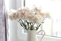 Charming Carnations / This delicately, multi-petaled single flower comes in many colours including pink, purple, yellow, red, white and orange.