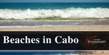 Beaches in Los Cabos / Los Cabos is home to dozens of great beaches. Some are best known for their beauty, others for their safe swimming, surf breaks or snorkeling and diving conditions. Discover and see more on https://www.loscabospassport.com/