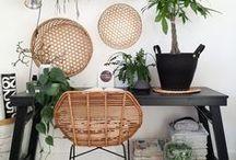 urban jungle interior / Schöner Wohnen mit Grünpflanzen: Sukkulenten, Farne und mehr. Go green!    ❤︎  Try a new home style: go green!