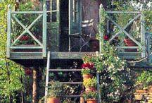Garden - Puutarha / Tips for taking care of your garden. Vinkkejä ja ideoita puutarhanhoitoon.