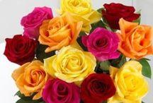Wedding Flowers / Flowers for a dream wedding