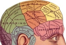 Brain News / Oh that magical mystery inside our heads! / by Susan LaVenture Austin