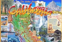 State and Regional Jigsaw Puzzles by White Mountain Puzzles / Fun Facts and iconic images capture the essence of each region and state from California to Maine on these fabulous 1000 piece jigsaw puzzles from White Mountain Puzzles.