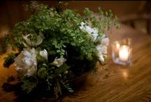Green / A wedding at Dawn Ranch with ferns and all variations of green, silver and accent of apricot.