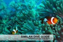 Similan Dive Guide / http://www.similandiveguide.com Similan islands information, dive site information and dive mapds