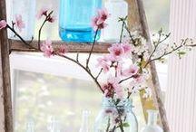 Garden&Flowers