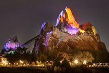 Animal kingdom / Walt Disney World's Animal Kingdom