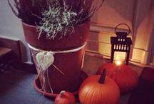 Jesień w moim domu / Autumn in my home