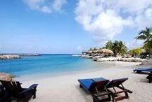 Lions Dive & Beach Resort  / by Lions Dive & Beach Resort Curaçao
