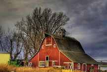 BARNS / by Art Umbach