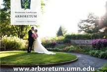 Weddings in the Garden / The Arboretum is the perfect location to create the wedding of your dreams amid the flowers. Learn how to make your outside wedding dream a reality with inspiration and ideas.