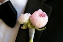 Wedding - Stylish Groom