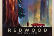 "Anderson Design Group || National Parks / ""In preparation for the 100th Anniversary of the National Park Service, we spent the last 5 years creating a complete series of prints—at least one for each of the 59 National Parks. In the tradition of early 20th-Century posters created by the Works Progress Administration, we have produced our own classic-looking art that commemorates our American heritage of wilderness and wonder.""  ON WEB: http://andersondesigngroup.blogspot.it/2015/08/after-5-years-we-have-completed-our.html"