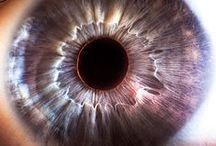 Suren Manvelyan | Your Beautiful Eyes / Il fotografo Suren Manvelyan, dopo aver realizzato una serie di scatti che hanno come protagonisti gli occhi degli animali, si è concentrato su quelli umani ideando Your Beautiful Eyes. Le foto, che mostrano occhi di vari colori e disanze ravvicinatissime, mostrano i particolari rilievi che non ci è permesso di notare ad occhio nudo. || ON WEB: https://www.behance.net/gallery/