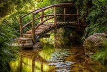 Bridges and Arches / Love can build a Bridge   Between your heart and mine....... / by Susan Ward