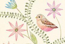 Birds - Illustrations