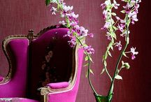 Casa Dolce Casa / Home Sweet Home...