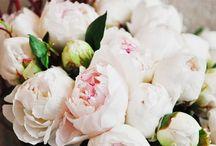 DIY Flowers & Decoration