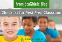 Ecoshield Blog / Helping you to understand pests better, tips to keep them away and more helpful stuff
