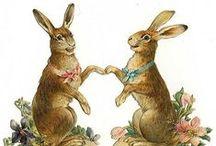 Vintage Illustrations   Bunnies & Hares