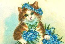 Vintage Illustrations   Cats