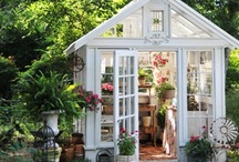 gardens + backyard