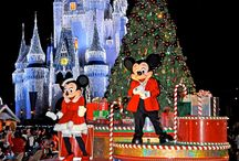 Our 2014-15 Disney trip