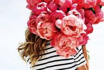 blooms / all things floral