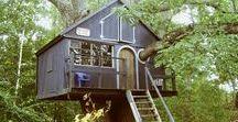 domki na drzewach-tree houses