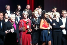 Palmarès du Théâtre 2013 / Photos et résultats de la soirée du Palmarès du Théâtre 2013