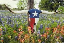 Lone Star Spangled Flags / by Rockin E Gift Company