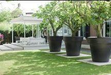 Tuin / Laat je inspireren door de prachtige projecten op walhalla.com voor het ontwerpen en aanleggen van je tuin.