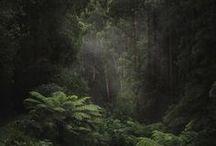 Australia i Oceania / Australia, Oceania, Micronesia, Polynesia, Melanesia, New Zeland, Fiji, Kiribati, Nauru, Palau, Papua New Guinea, Samoa, Tonga, Tuvalu, Vanuatu, Marshall Islands, Solomon Islands, Christmas Island, Cocos Islands