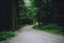drogi / ways, roads, routes, path