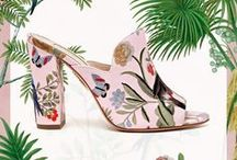 AQUAZZURAXdeGournay Special Collection