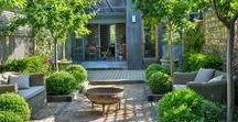 Small Gardens / Inspiration & the best plants for small gardens, how to design a small garden, ideas for small space gardening.