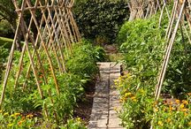 Sustainable Stylish Gardening / Clever ideas and inspiration for garden recycling.