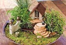 Fairy tail gardens