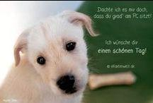 Hunde Grußkarten / Hunde, Dogs, Grußkarten